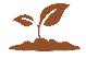 Concimi, ammendanti, correttivi e prodotti ad azione specifica: modifiche al D.Lgs 75/10 sui fertilizzanti