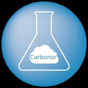 Carbonio elementare e Carbonio organico